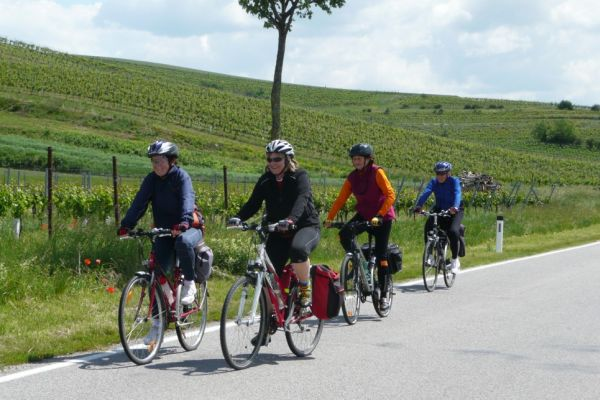 Na ceste medzi vinohradmi I.